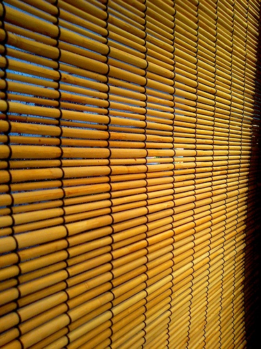 Beautiful Bamboo Blinds 2016