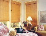 Enticing Bamboo Shades