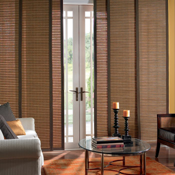 Appealing Blinds For Sliding Doors