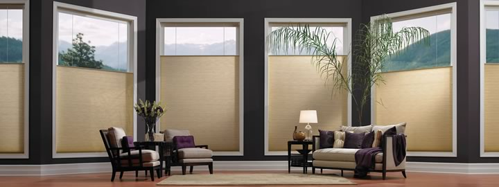 Budget Cordless Window Shades