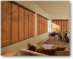 Angelic Panel Track Blinds