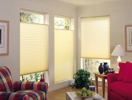 Budget Pleated Window Shades