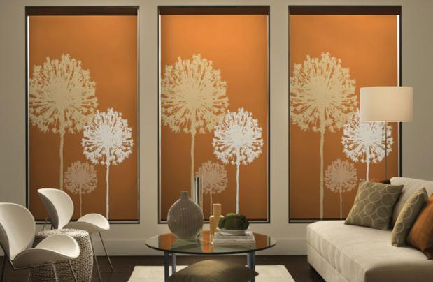 Design Custom Window Shades