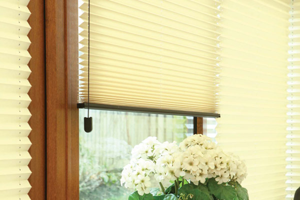 Amo Pleated Blinds